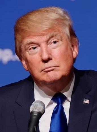 Donald_Trump_August_19_2015_cropped-compressor.jpg